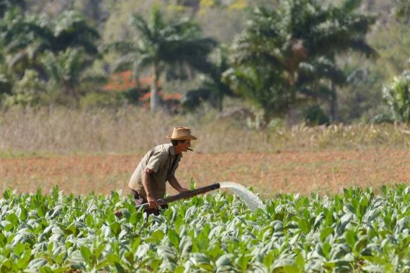 Cuba-150S71_3484